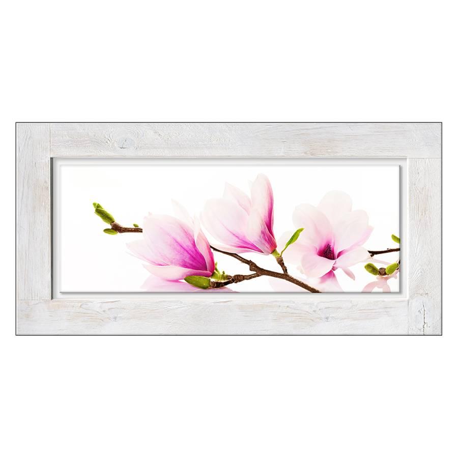 glasbild magnolie home24. Black Bedroom Furniture Sets. Home Design Ideas