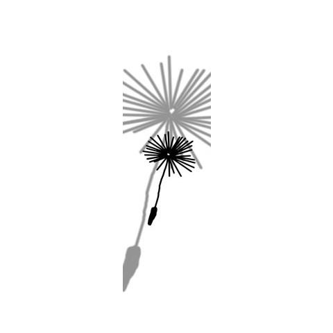 Flächenvorhang Löwenzahn – Blüten II, emotion textiles online bestellen
