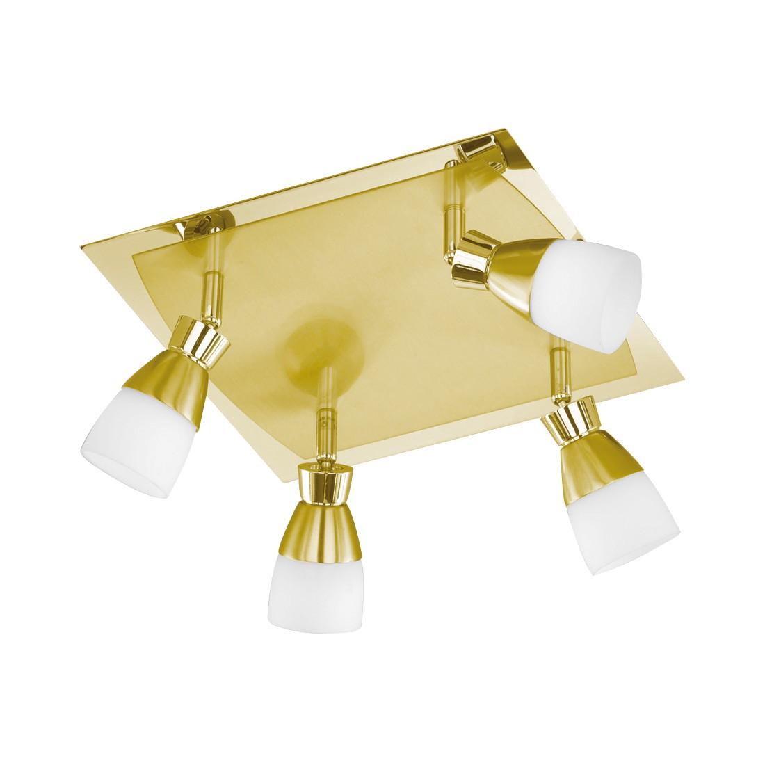 Moderne LED-Deckenleuchte der Modellreihe Morani – Messinglook, Paul Neuhaus jetzt bestellen