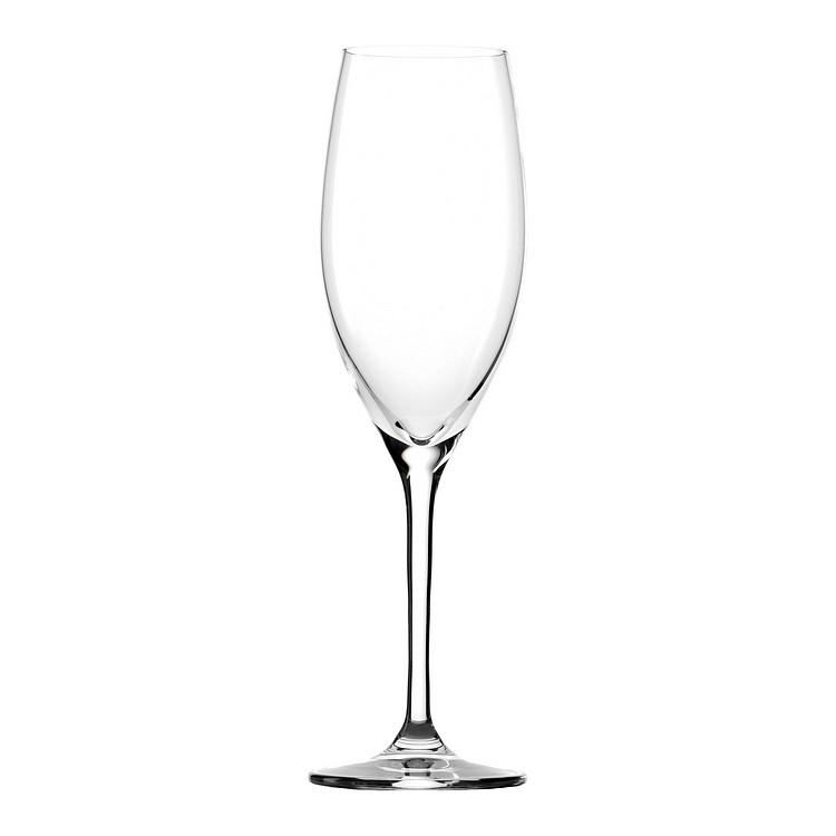 Champagnerkelch Classic (6er-Set), Stölzle Lausitz bestellen