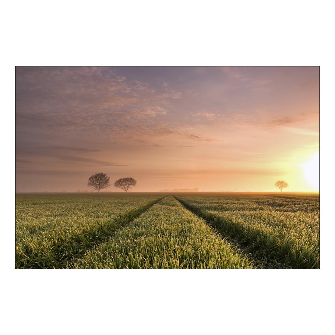 Acrylglasbild Foggy Sunrise – Abmessung 60×40 cm, Gallery of Innovative Art günstig online kaufen
