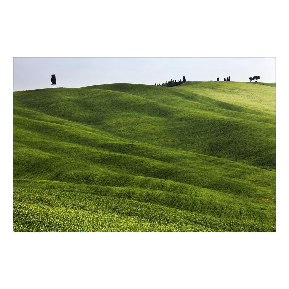 Acrylglasbild Green Grassy Valley – Abmessung 90×60 cm, Gallery of Innovative Art bestellen