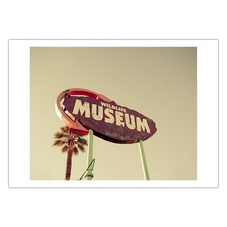 Acrylglasbild Wild Museum von Keri Bevan – Größe: A5 (15 x 21 cm), Juniqe günstig kaufen
