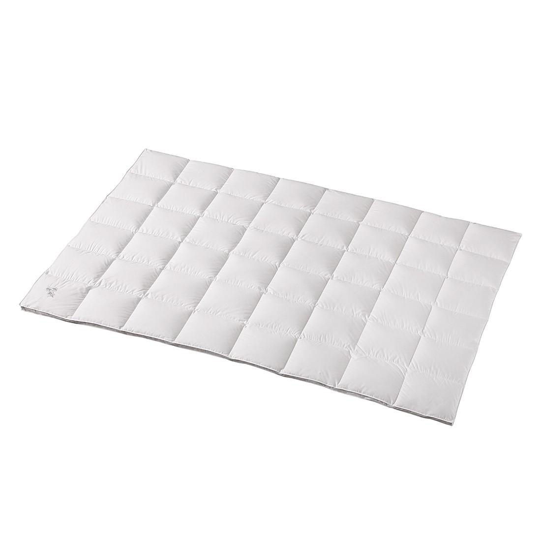Bettdecke White Goose – 200 x 200 cm – Medium – Kassettendecke, Balette günstig online kaufen