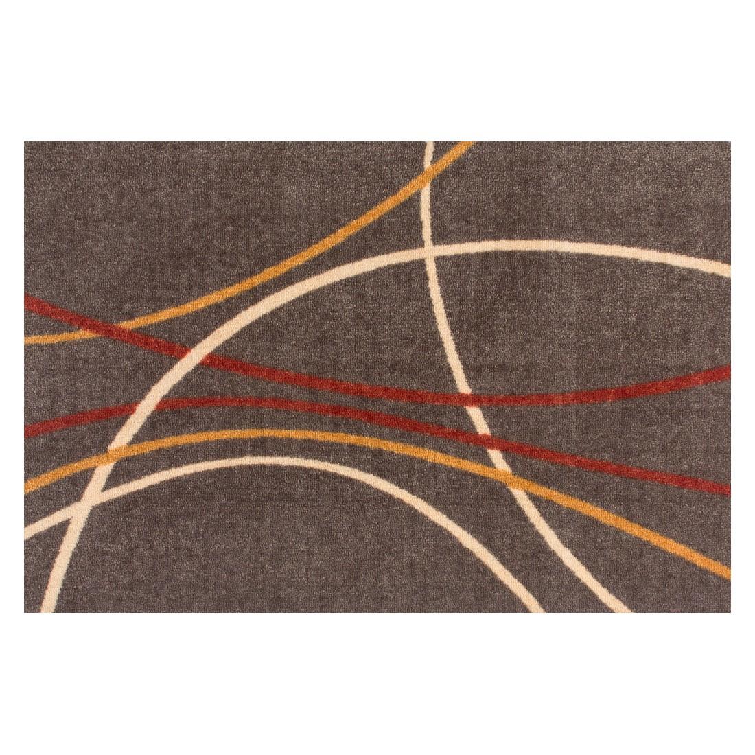 Fuß- & Saubermachmatte Salü IV – 60 x 90 cm, Kayoom kaufen