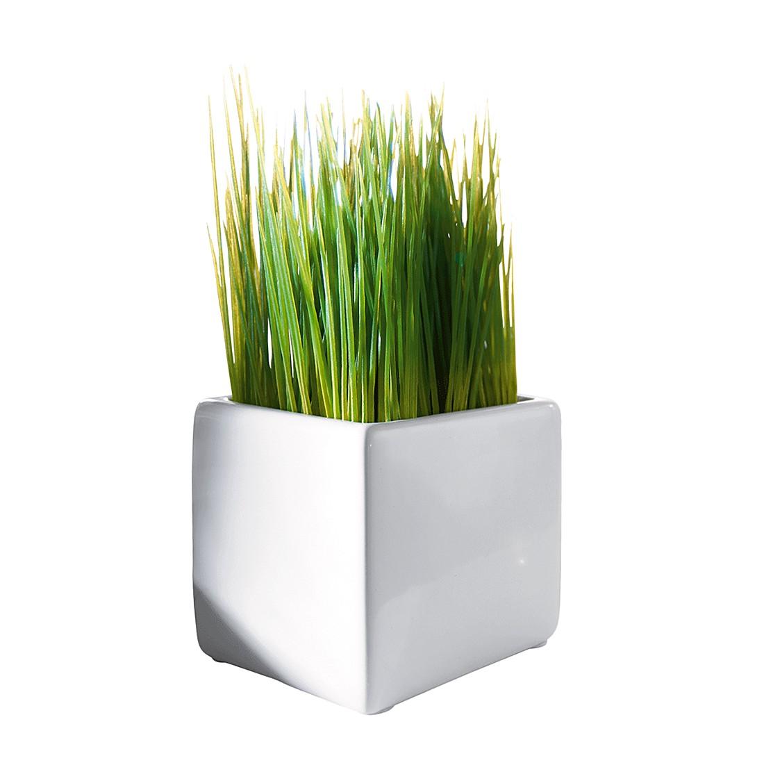 Dekogras im Keramiktopf – Kunststoff – Weiß/Grün, PureDay günstig kaufen