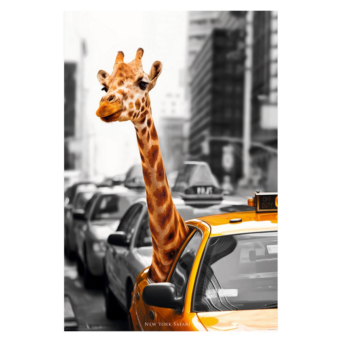 Decopanel New York safari, Reinders kaufen