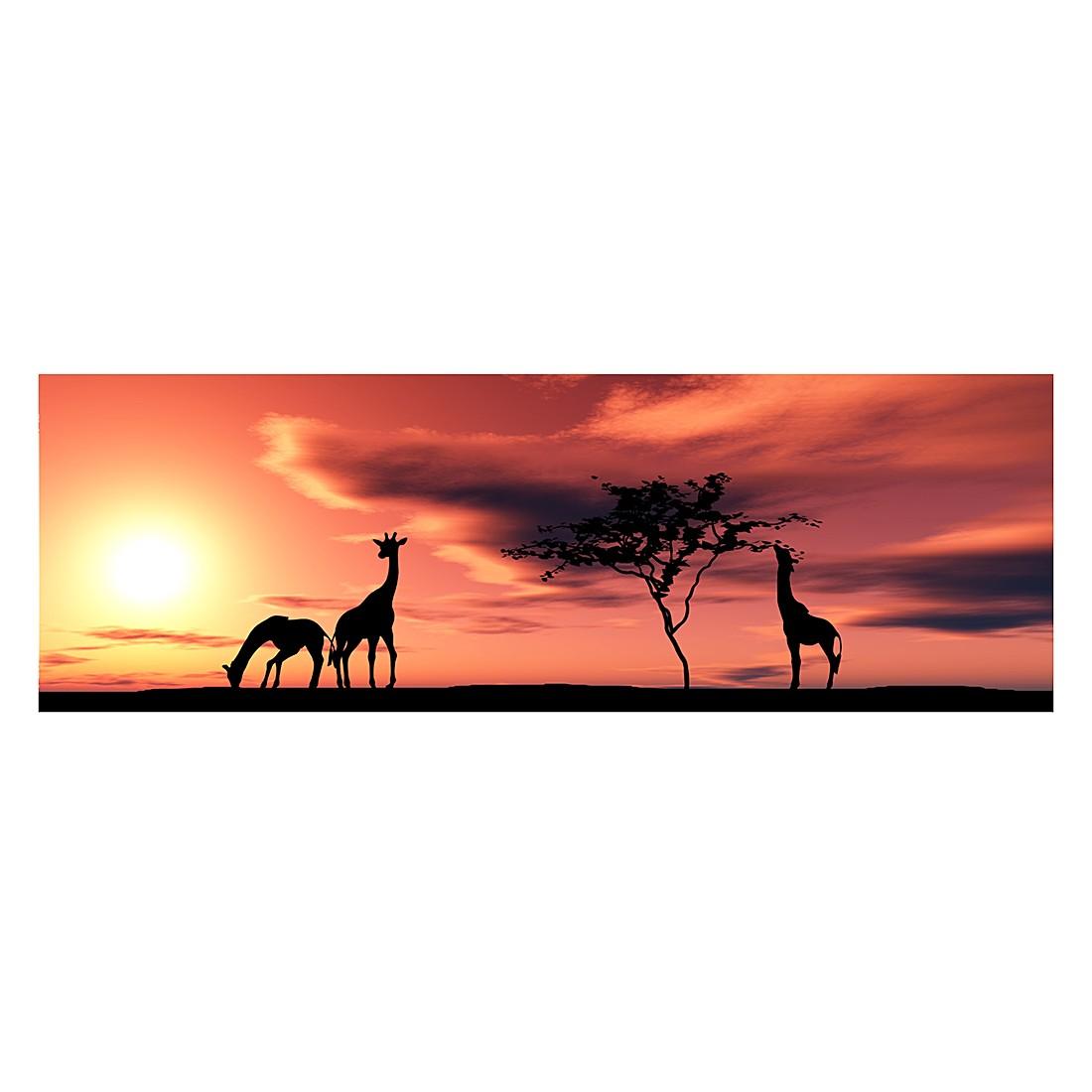 fototapete african savannah mantiburi g nstig kaufen. Black Bedroom Furniture Sets. Home Design Ideas