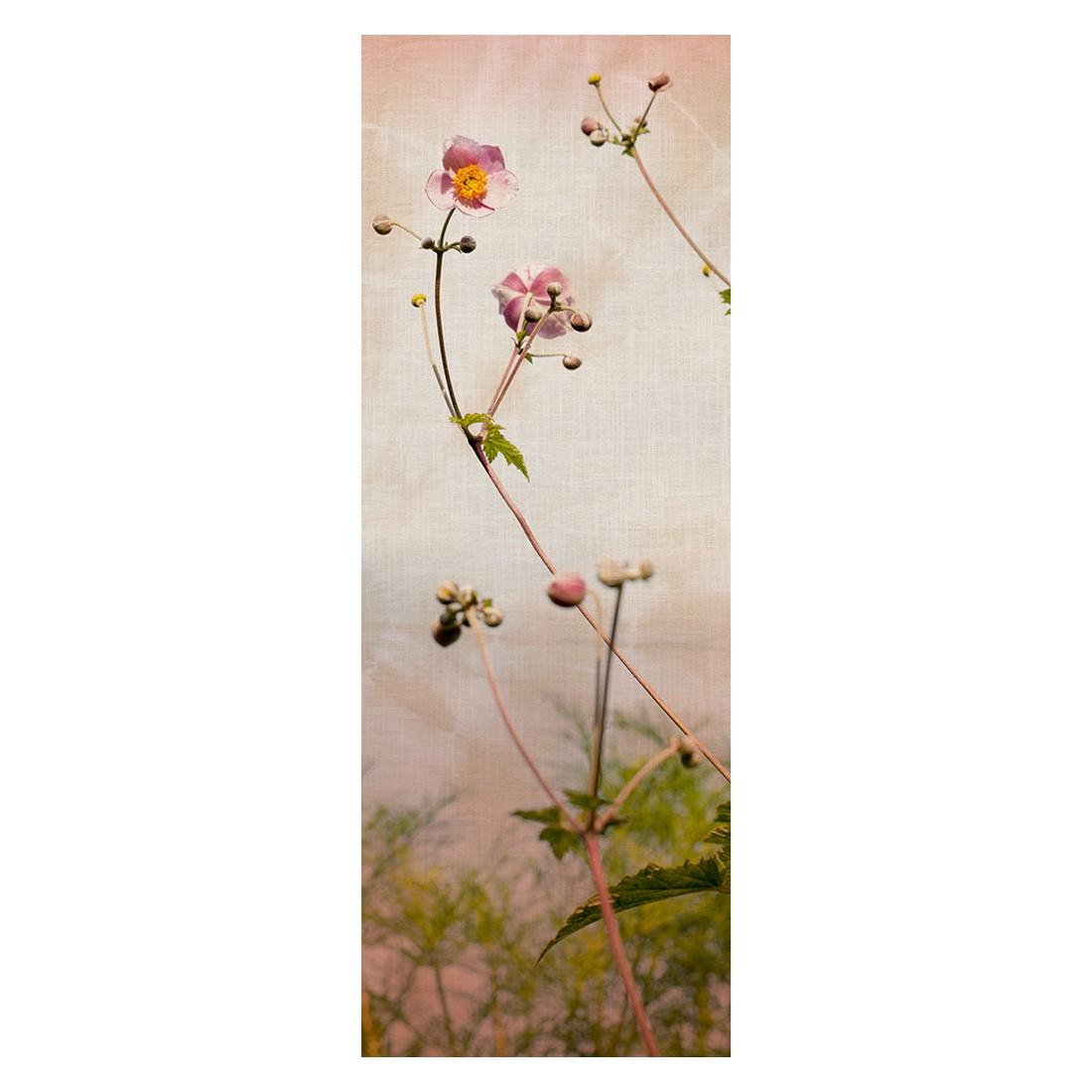 Decopanel Romance – bunt, grün, rosa – glatt, Architects Paper jetzt kaufen