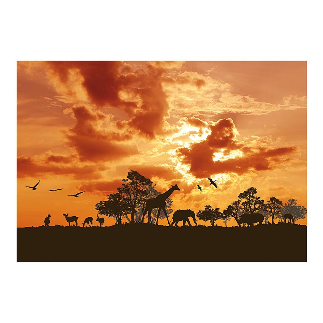 Fototapete Sunrise Safari, Mantiburi günstig