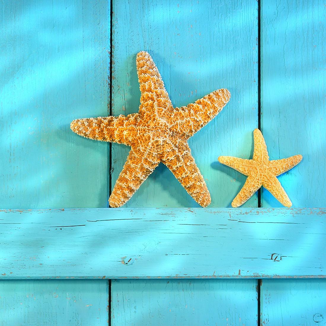Glasbild Starfish 30x30, Pro Art