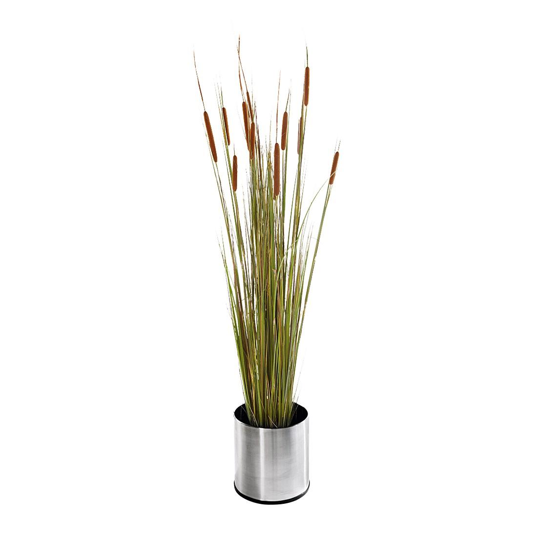 Kunstpflanze Schilf – Textil/Kunststoff – Grün, PureDay günstig bestellen