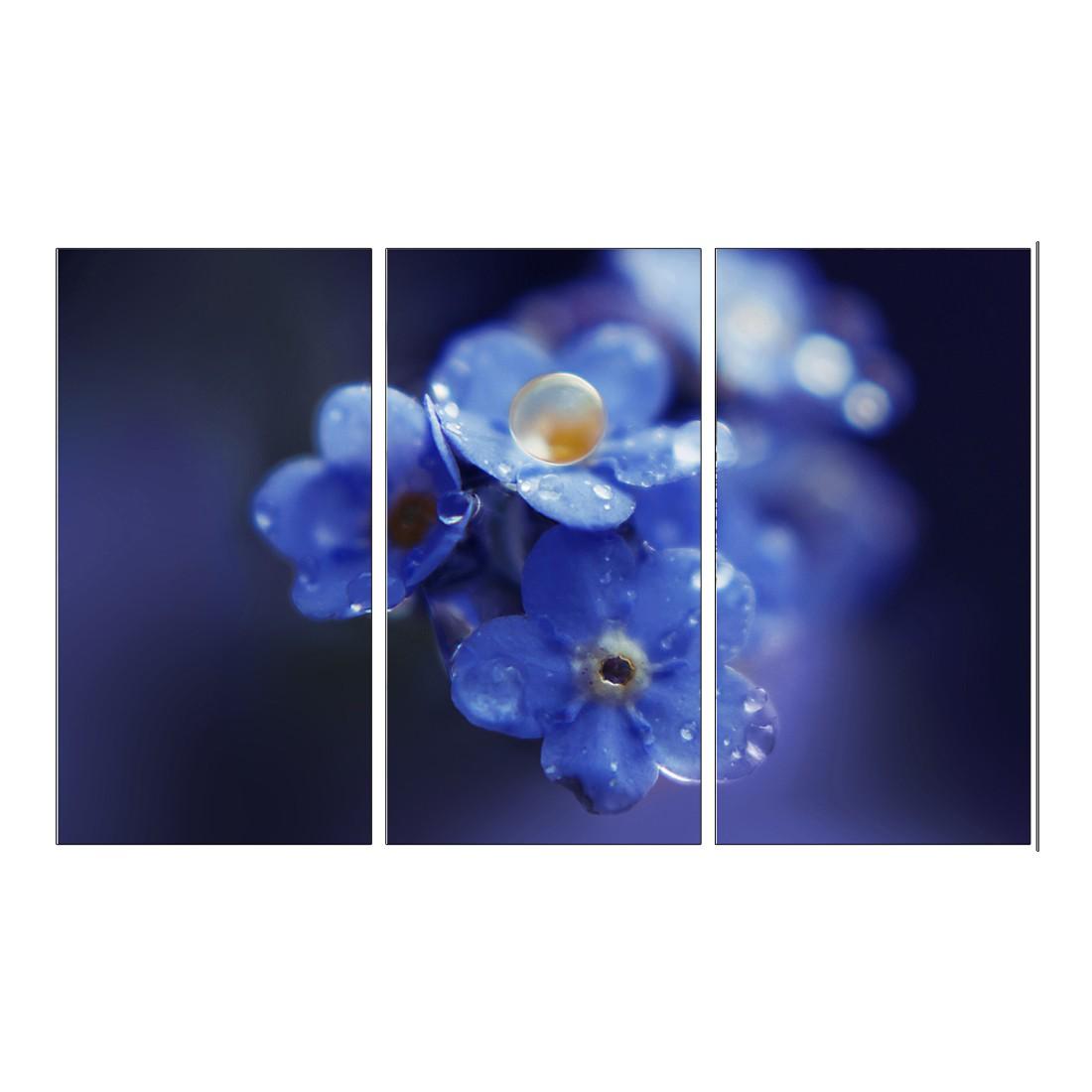 Leinwandbild BLUE WATERDROP FLOWERS  – Abmessung 130 x 80 cm, Gallery of Innovative Art jetzt bestellen