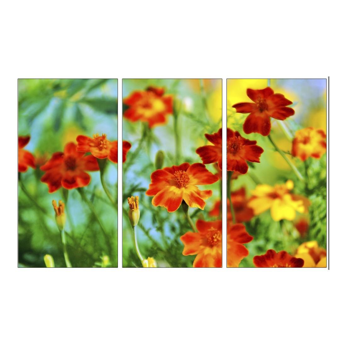 Leinwandbild Blumenmeer – 120 x 80cm, Gallery of Innovative Art online kaufen