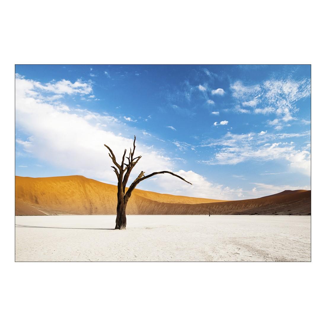Leinwandbild DEAD DESERT TREE – Abmessung 100 x 50 cm, Gallery of Innovative Art kaufen