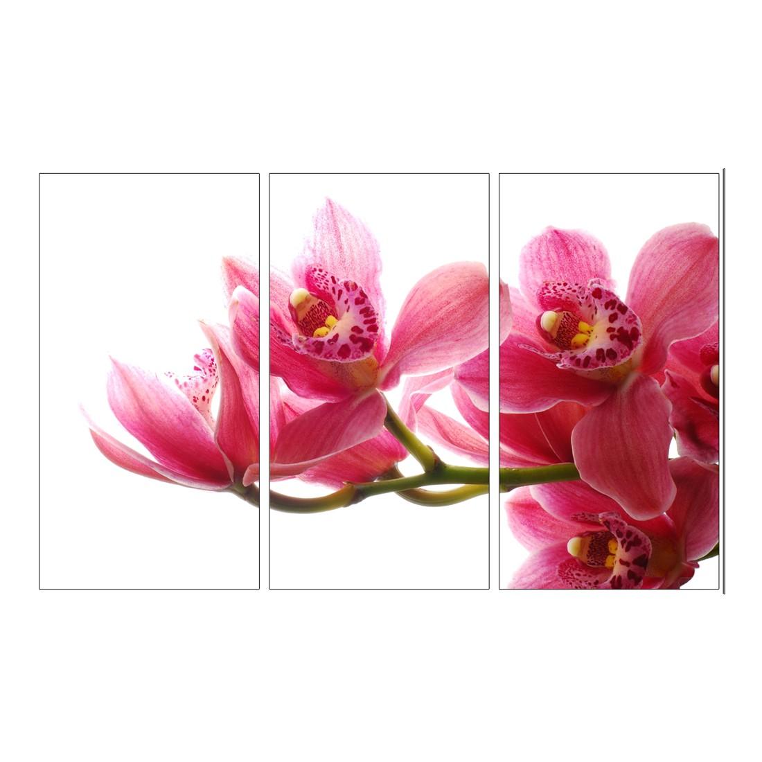Leinwandbild Orchidee – 120 x 80cm – Abmessung: 120 x 80cm, Gallery of Innovative Art bestellen