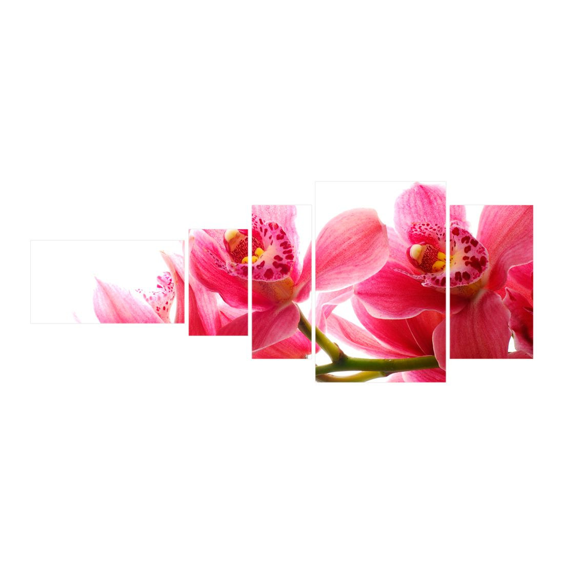 Leinwandbild Pink Orchidee, 200×80 cm, Gallery of Innovative Art online bestellen