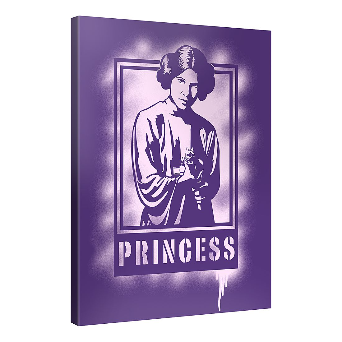 Leinwandbild Princess Leia Artwork – 100×75 cm, Gallery of Innovative Art jetzt bestellen