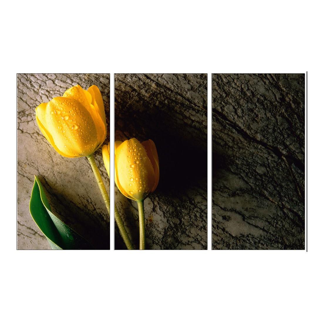 Leinwandbild Tulpen – 120 x 80cm, Gallery of Innovative Art günstig kaufen