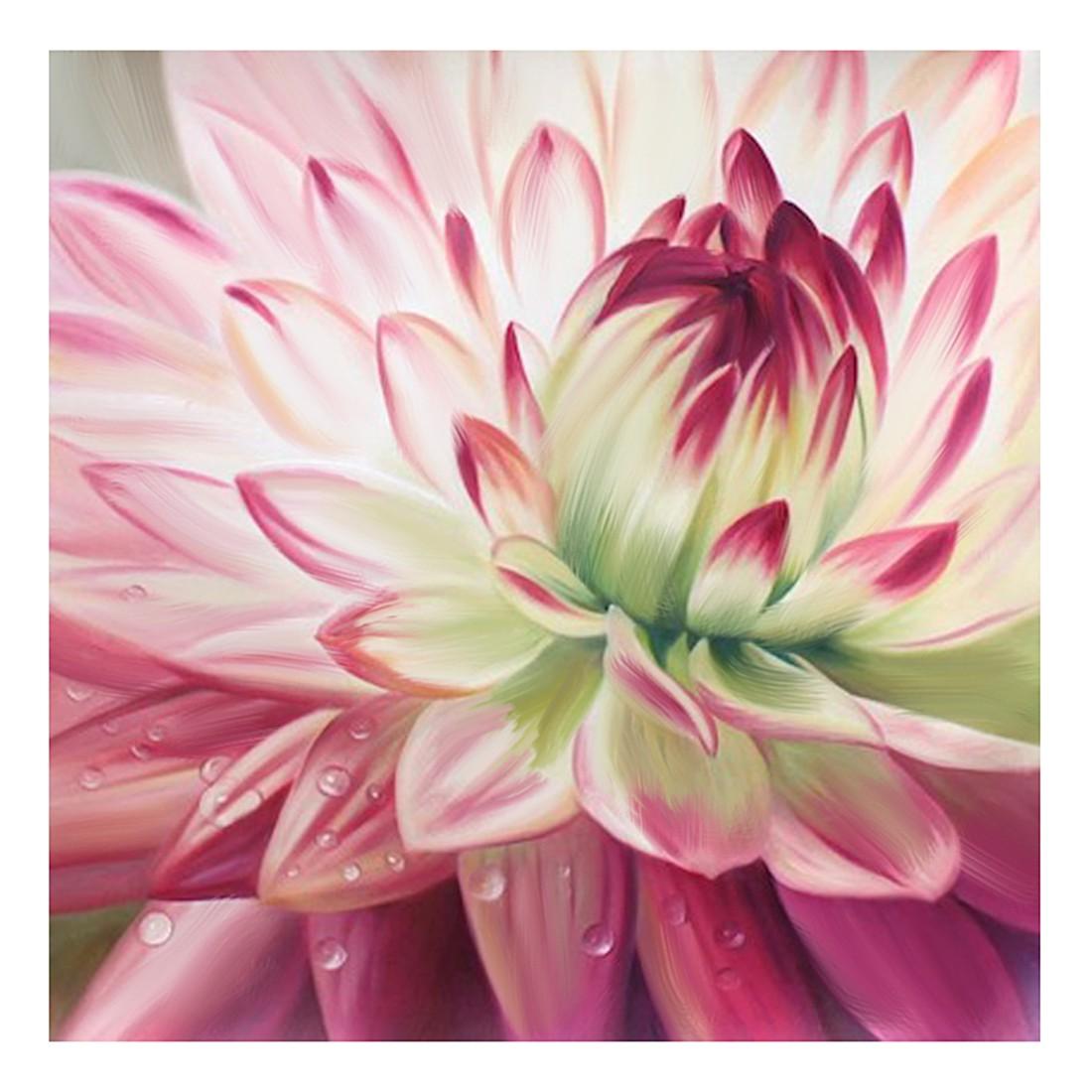 Ölgemälde Schnitt-Blume von Moqui – Größe 70 x 70 cm, yourPainting jetzt bestellen