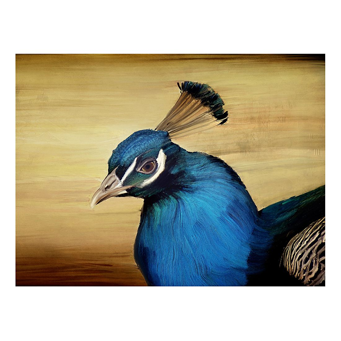 Ölgemälde Blauer Pfau von Angela Dölling – Größe 30 x 40 cm, yourPainting günstig