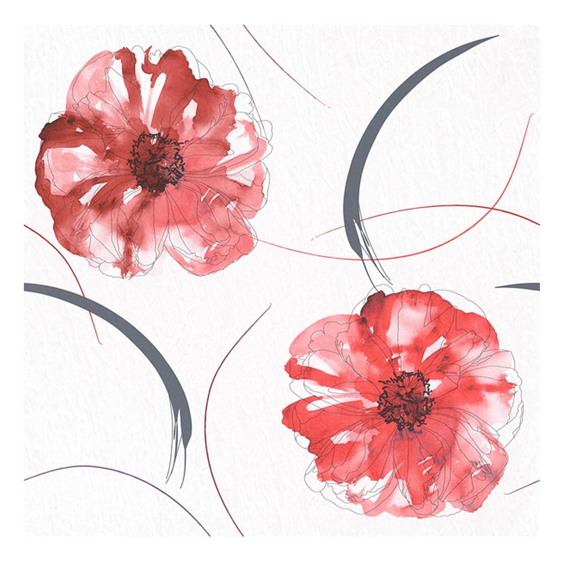 Papiertapete Aquarelle – weiß, rot, schwarz, basaltgrau, glänzend – glatt, Home24Deko günstig bestellen