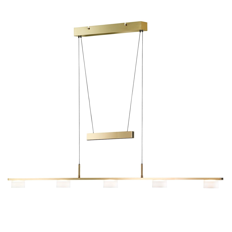 led pendelleuchte arvid 5 flammig gold metall glas honsel a g nstig online kaufen. Black Bedroom Furniture Sets. Home Design Ideas