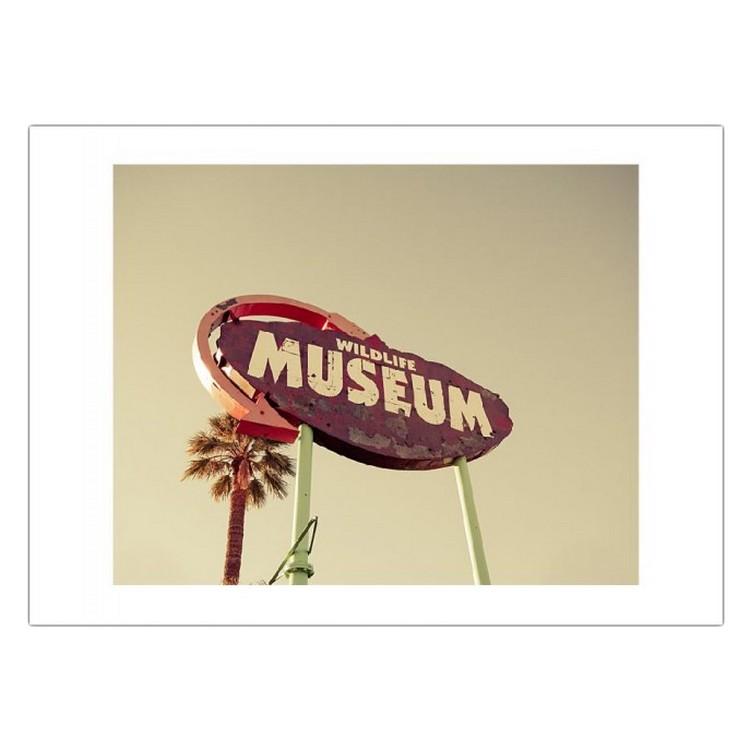 Poster Wild Museum von Keri Bevan – Größe: A4 (21 x 30 cm), Juniqe bestellen
