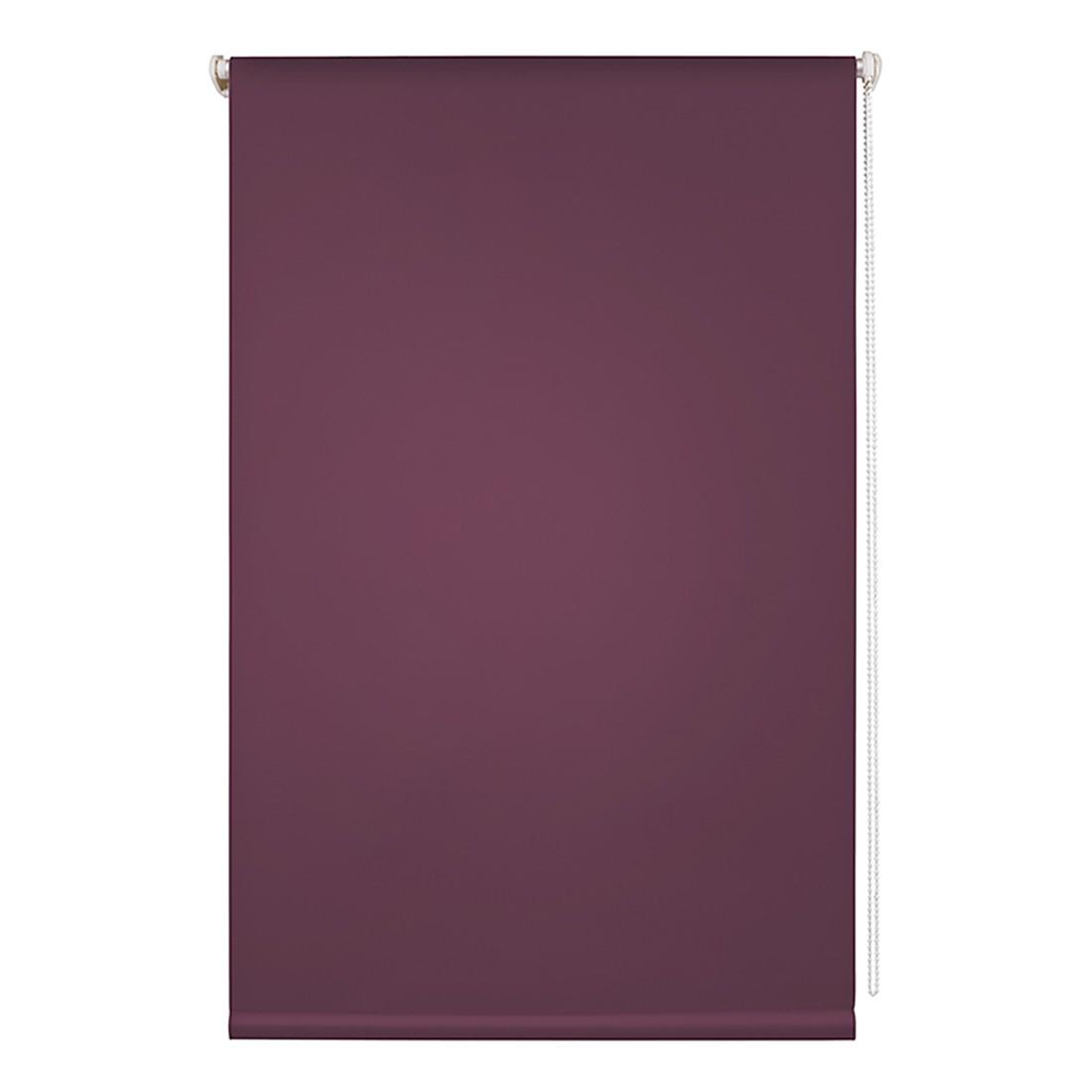 Rollo Klemmfix, lichtdurchlässig – Polyester, Brombeer / Lila – Breite: 45 cm, Wohn-Guide günstig online kaufen