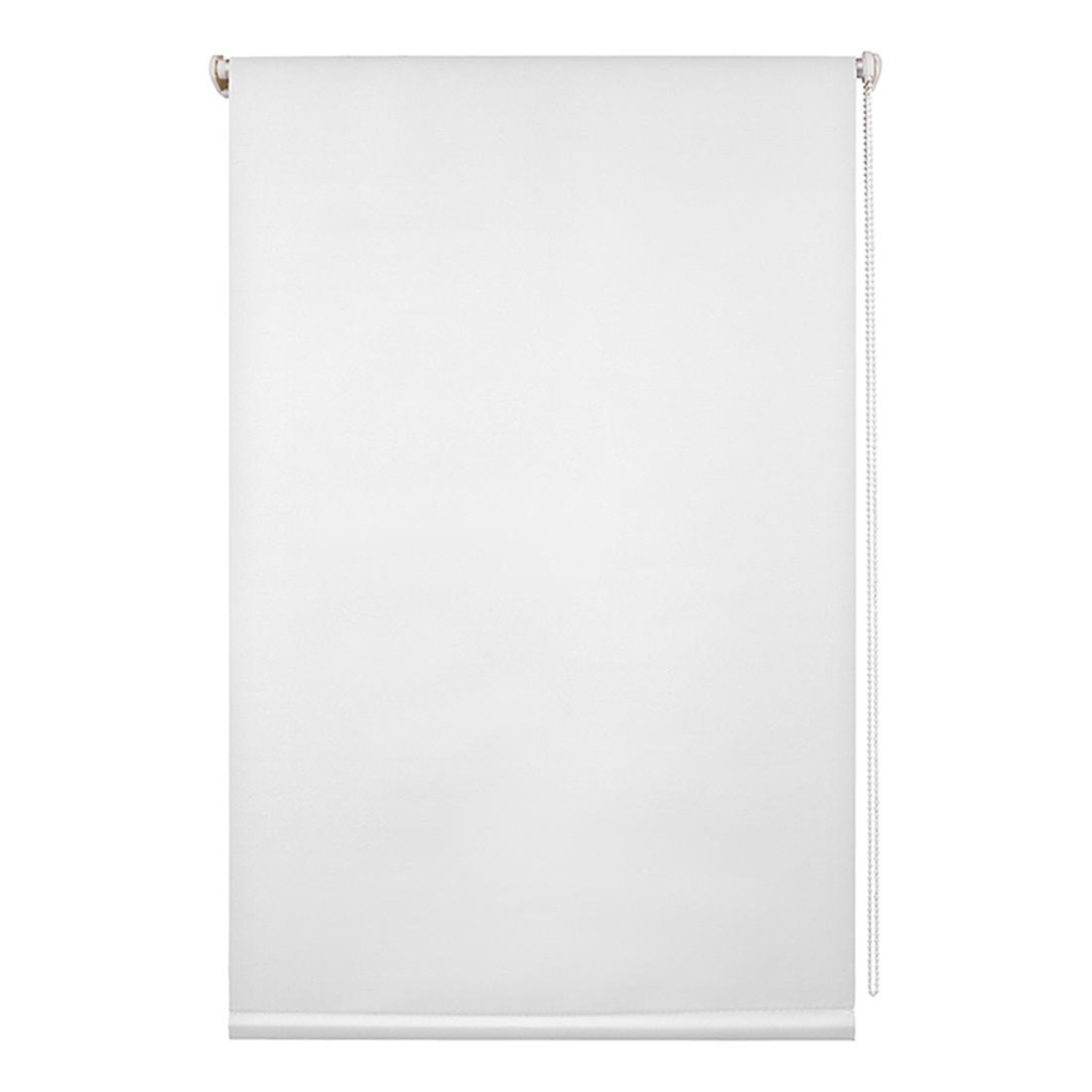 Rollo Klemmfix, Thermo/Verdunkelung – Polyester, Weiß – Abmessungen (H x B): 150 x 45 cm, Wohn-Guide kaufen