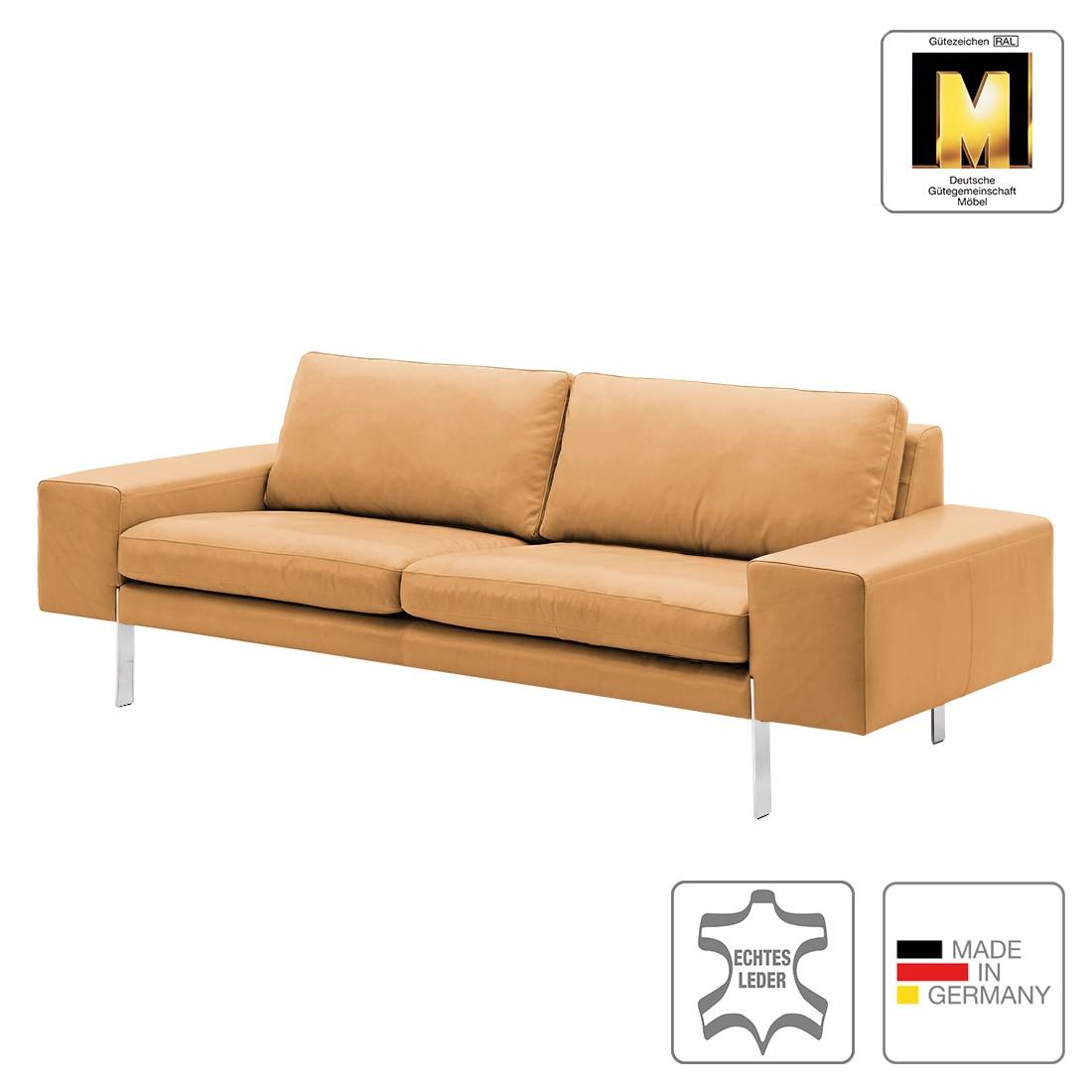 rolf benz sofa gebraucht berlin freistil 141. Black Bedroom Furniture Sets. Home Design Ideas