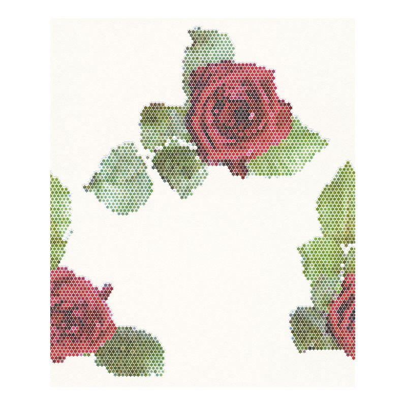 Tapete Rendez-vous Roses – weiß, grün, rot – glatt, Lars Contzen jetzt kaufen
