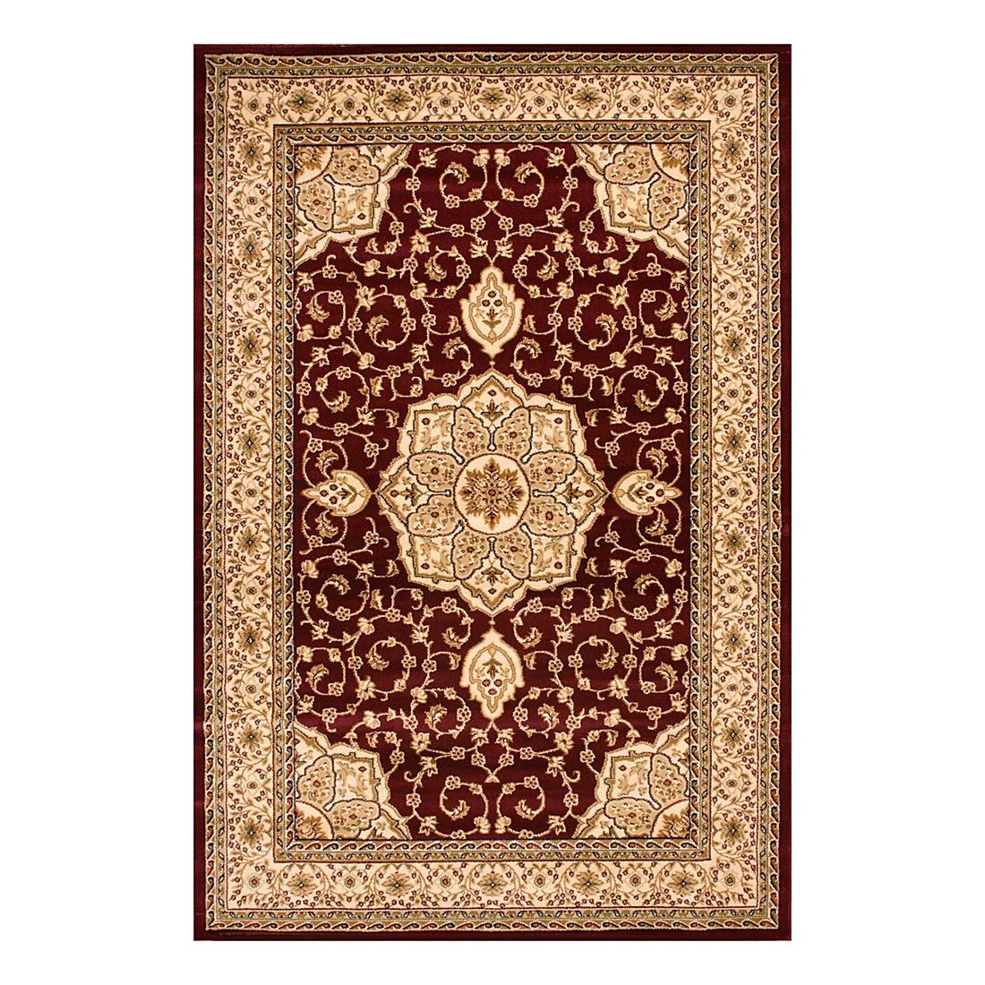 Teppich Rosario – Rot – 120 x 170 cm, Kayoom online bestellen