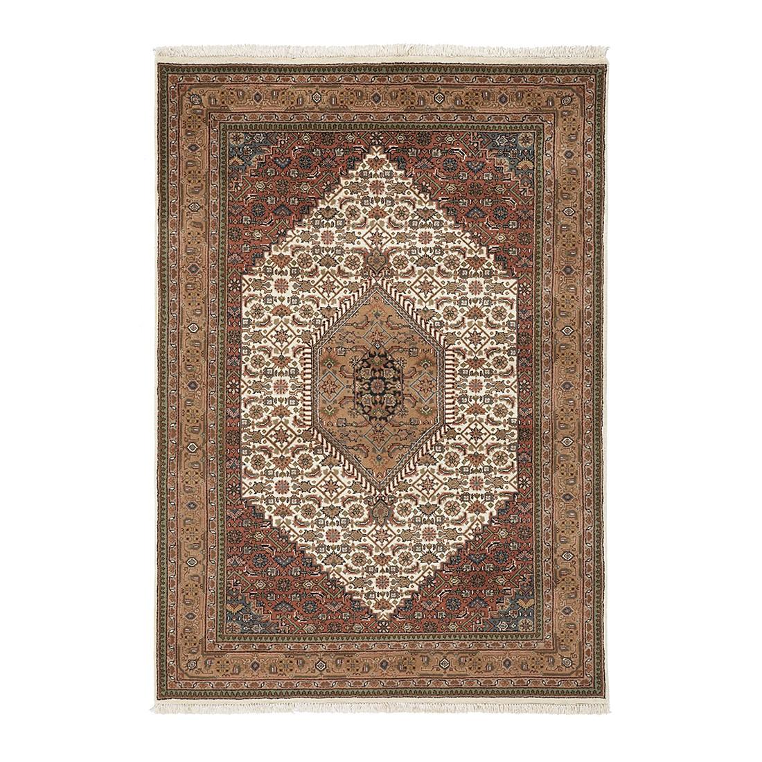 Teppich Mohammadi Bidjar – Beige – 60 x 90 cm, Parwis günstig kaufen