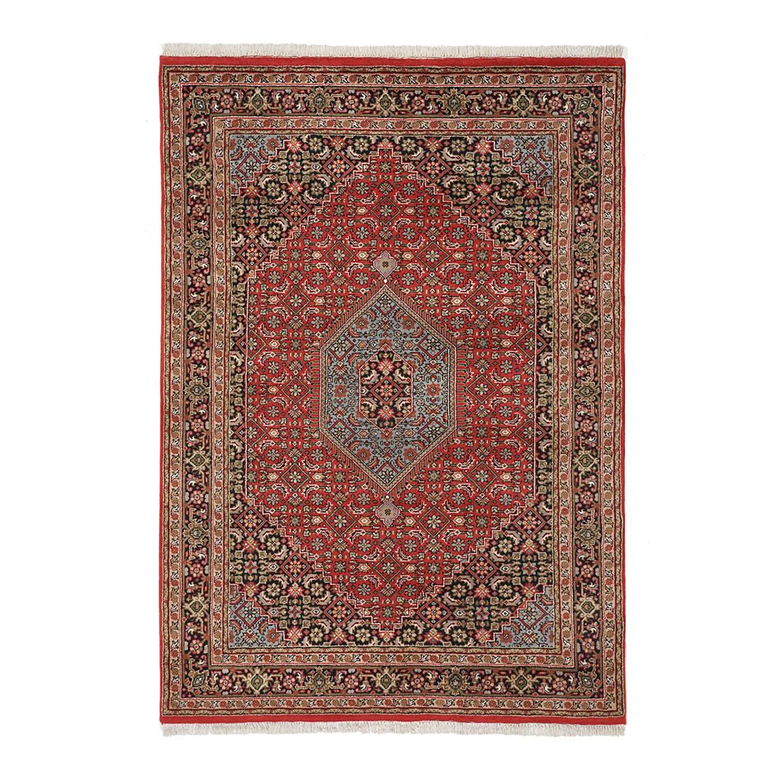 Teppich Mohammadi Bidjar – Rot – 60 x 90 cm, Parwis jetzt kaufen