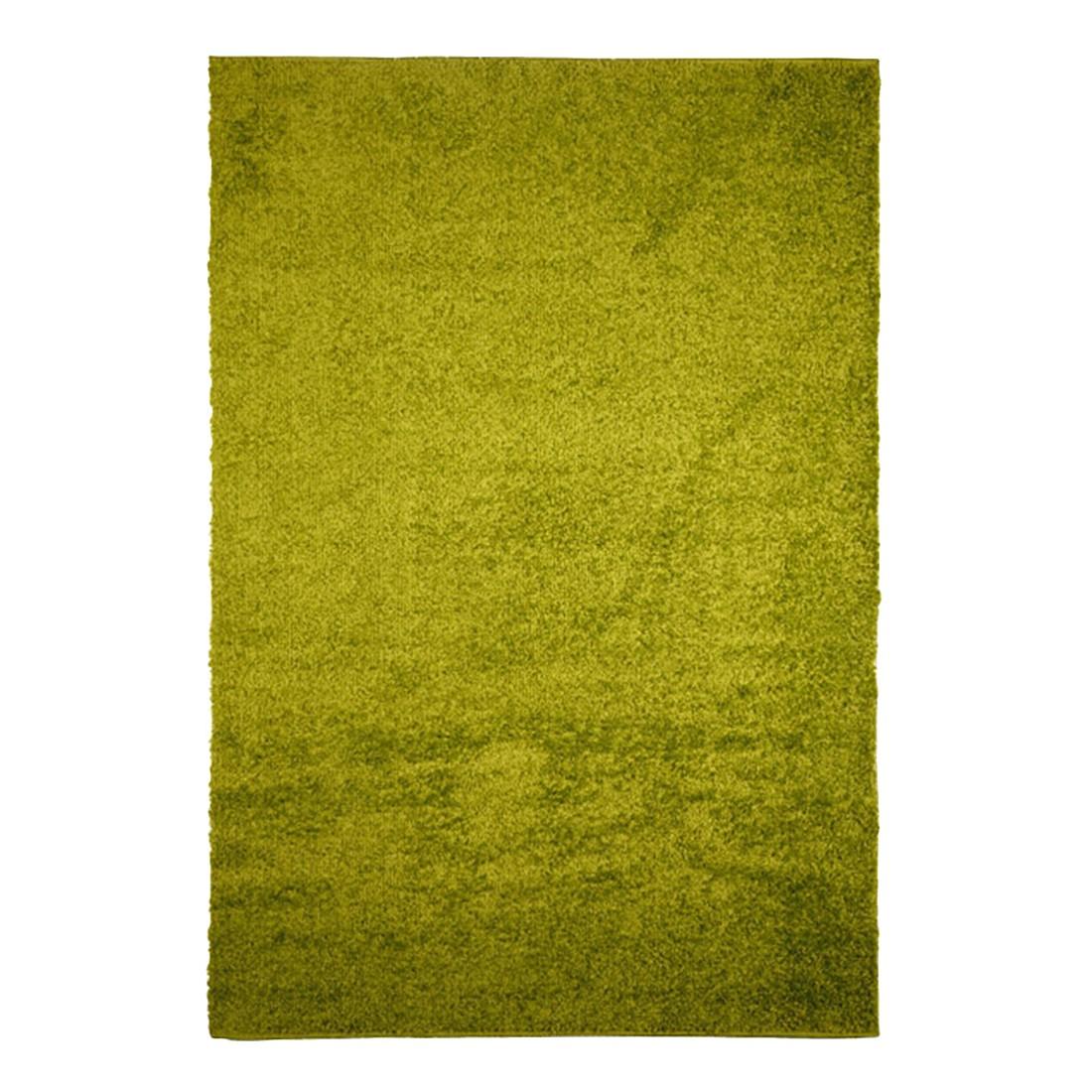 Teppich Primo 2020 – Gruen – 290 x 200 cm, KC-Handel kaufen