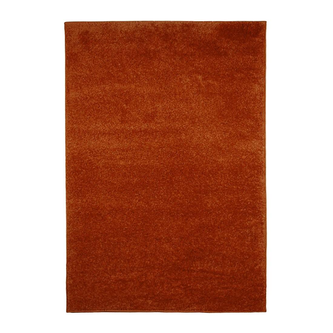 Teppich Primo 2020 – Terra – 230 x 160 cm, KC-Handel günstig online kaufen