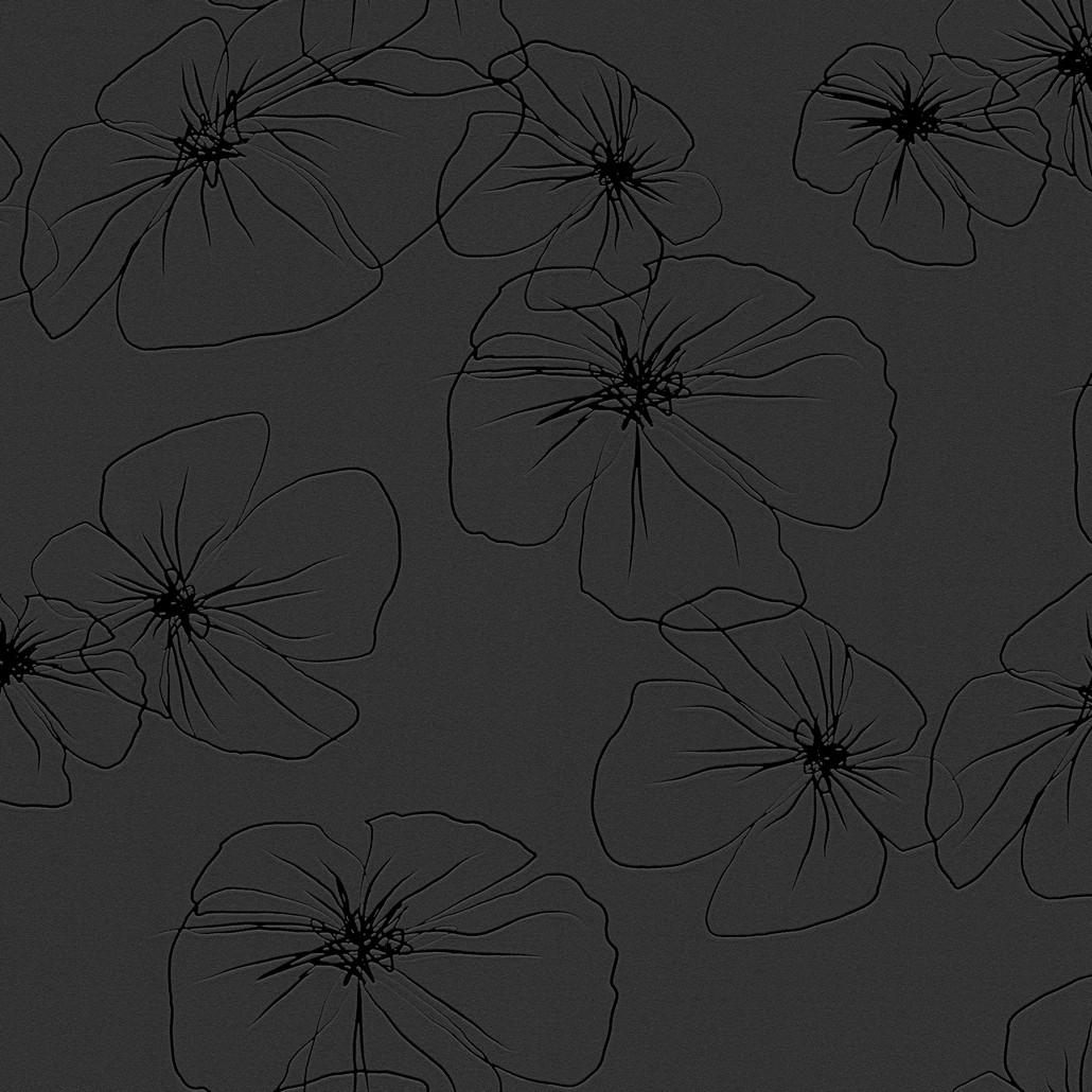 Vliestapete Flower Drawings 3 – Schwarz, Graphitgrau – Glatt, Lars Contzen online kaufen