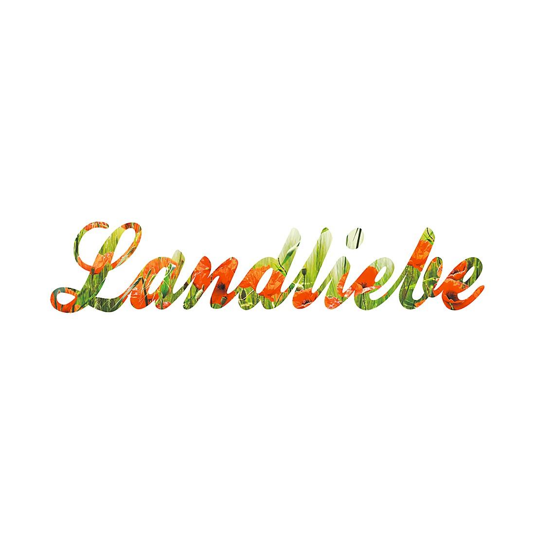 Wandbild Landliebe, Pro Art