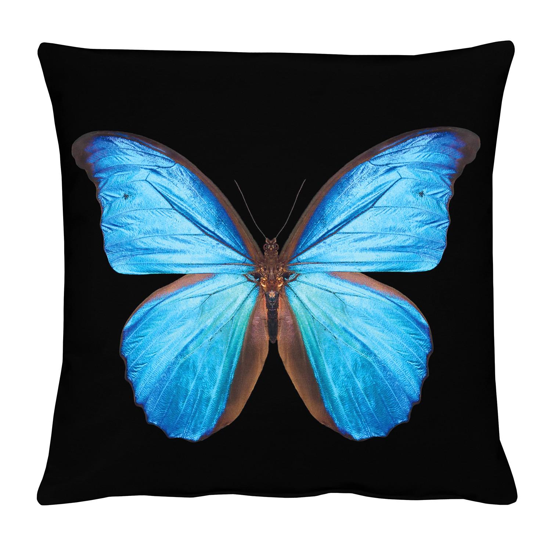 Kussensloop Vlinder - Zwart/blauw, Apelt