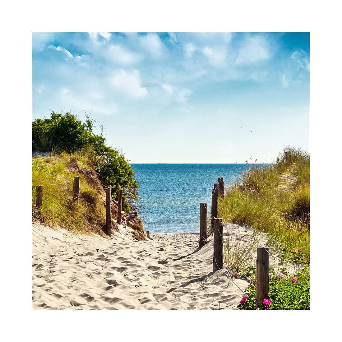 Afbeelding Summer Breeze I - 20x20cm, Pro Art