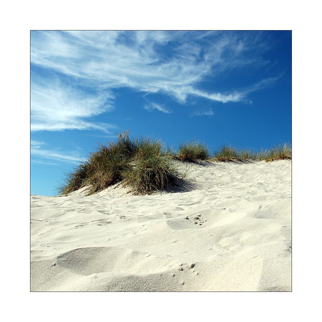 Afbeelding Summer Breeze II - 20x20cm, Pro Art