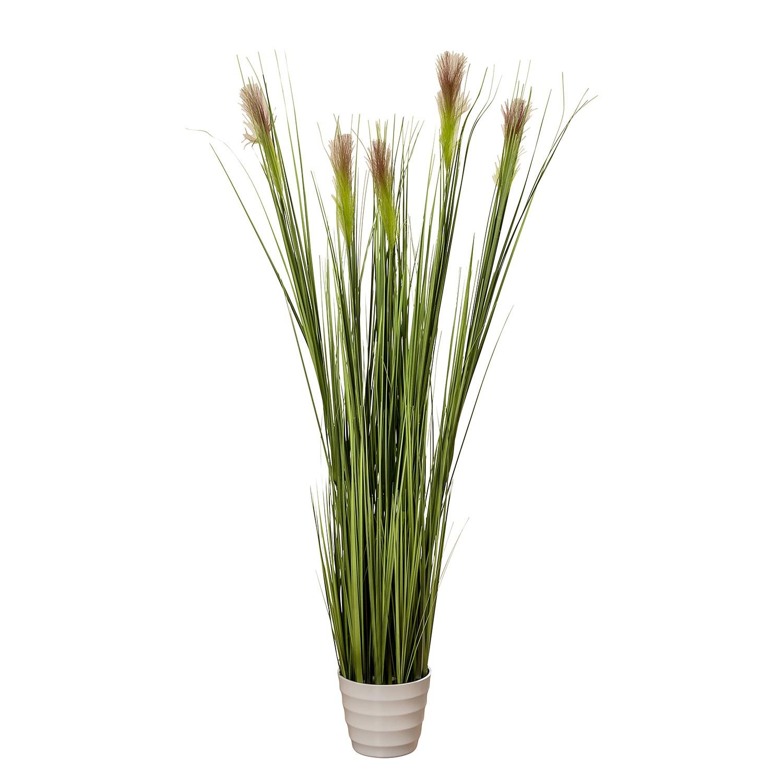 Kunstplant Gras - kunststof - groen/wit, Ars Natura