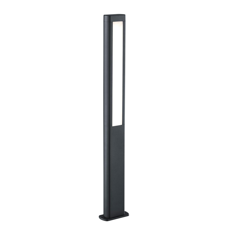 energie  A+, LED-padverlichting Rhine - plexiglas/aluminium - 2 lichtbronnen - 100, Trio
