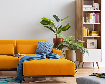 home24 trend